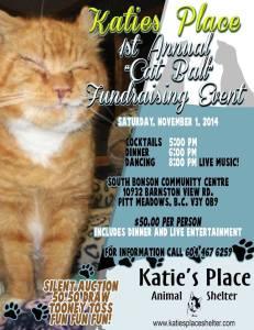 Katie's Place Animal Shelter - Maple Ridge